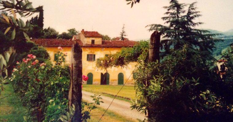 Alessandra's Reflections: Fett'unta (Oily Slice)